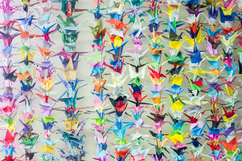 Harley's teachers were inspired by the story of 'Sadako and the Thousand Paper Cranes.'